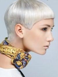 Цвет волос пепельный блонд на оригинальной короткой стрижке с челкой великолепно гармонирует с легким макияжем на каждый день в нежных коричневых оттенках